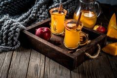 辣热的南瓜桑格里酒 库存图片