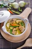 辣热的鸡绿色咖喱用椰奶汤 库存照片