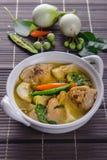 辣热的鸡绿色咖喱用椰奶汤 图库摄影