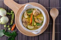 辣热的鸡绿色咖喱用椰奶汤 免版税库存图片