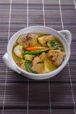 辣热的鸡绿色咖喱用椰奶汤 免版税图库摄影