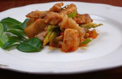 辣猪肉用在泰国食物的咖喱 免版税图库摄影