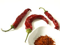 辣的食物 图库摄影