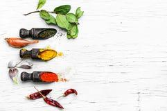 辣的香料品种  免版税库存图片