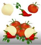 辣调味汁蕃茄、葱和胡椒 免版税库存图片