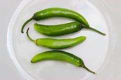 辣食物的四jalapeño chilis 免版税库存照片