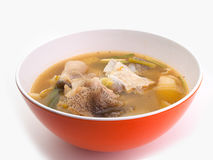 辣鱼汤,热的汤 免版税库存图片