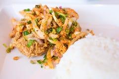 辣鸡的米 图库摄影