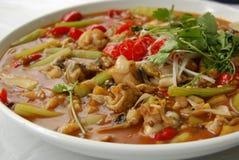 辣chuancai的食物 图库摄影