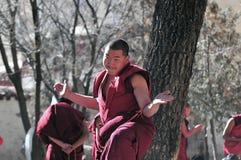 辩论修士西藏 库存照片