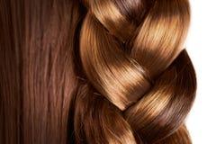 辫子发型 免版税图库摄影