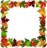 边界五颜六色的叶子 库存照片