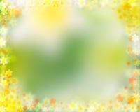 边界五颜六色的花卉春天 免版税库存图片