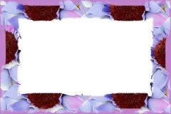 边界在白色的织品花 库存例证