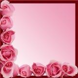 边界底部框架粉红色玫瑰端 免版税库存图片