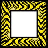 边界框架模式斑马 图库摄影