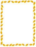 边界榆木秋天框架金黄叶子 库存图片
