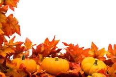 边界秋天收获 图库摄影