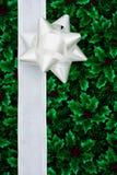边界节假日 免版税图库摄影