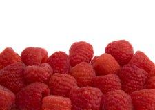 边界莓 免版税库存照片
