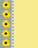 边界雏菊方格花布绿色春天 库存照片