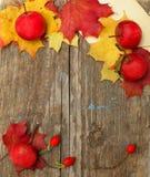 边界-秋天苹果、野玫瑰果和叶子 图库摄影
