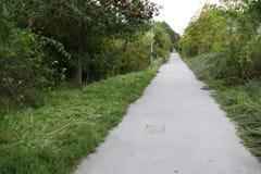 边路在一个绿色城市公园 免版税库存图片