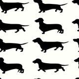 达克斯猎犬无缝的样式 库存例证