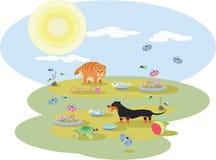 达克斯猎犬狗和一只红色猫的抽象例证与玩具 库存照片