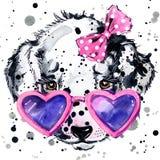达尔马希亚小狗T恤杉图表 与飞溅水彩的小狗例证构造了背景 异常的例证wat