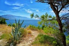 达尔马希亚海岸克罗地亚 库存图片