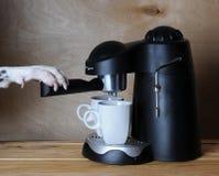 达尔马希亚barista准备咖啡 Dog& x27; 在煮浓咖啡器的把柄的s爪子 图库摄影