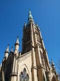 达尼丁大教堂 免版税图库摄影