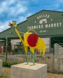 达拉斯与异想天开的雄鸡,六个金属雕塑之一的农夫市场,达拉斯,得克萨斯 免版税图库摄影