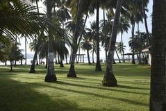 从达沃江边岛屿旅馆的地方看法 免版税库存图片