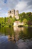 达翰姆大教堂和威尔河 库存照片