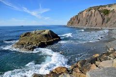 达讷论点陆岬,南加州 免版税库存照片