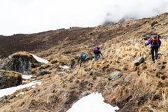 迁徙与雪和干草的人贫瘠上升的小山 免版税库存照片