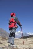 迁徙在喜马拉雅山地区的孑然夫人 免版税库存图片
