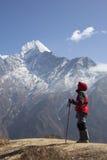 迁徙在喜马拉雅山地区的孑然夫人 免版税库存照片