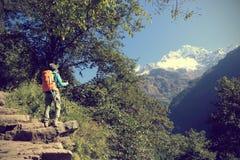 迁徙在喜马拉雅山山的背包徒步旅行者 库存照片