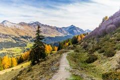 迁徙在瑞士阿尔卑斯在秋天- 15 库存照片