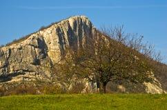 迁徙在草甸有大岩石的和老树的秋天在一晴朗的秋天天 库存照片
