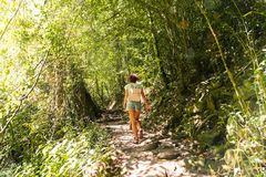 迁徙的足迹热带雨林的少妇 库存图片