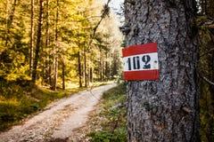 迁徙的路线标志在阿尔卑斯 库存图片