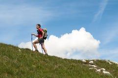迁徙的阿尔卑斯 免版税库存照片