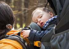 迁徙的婴孩 免版税库存图片