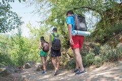 迁徙,小组一起走户外在森林里的远足者背包徒步旅行者 免版税库存图片