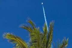 迅速上升对在棕榈树背景的蓝天的喷气式歼击机天空 库存图片