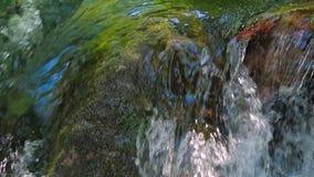 迅速地落小河的水岩石 特写镜头 股票录像